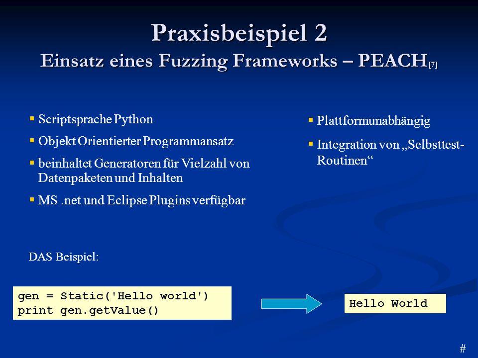 Praxisbeispiel 2 Einsatz eines Fuzzing Frameworks – PEACH[7]